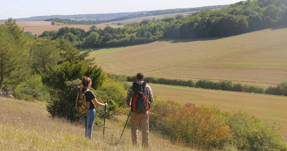 Paysage en pays de dreux, champs, arbres, deux personnes profitent de la nature