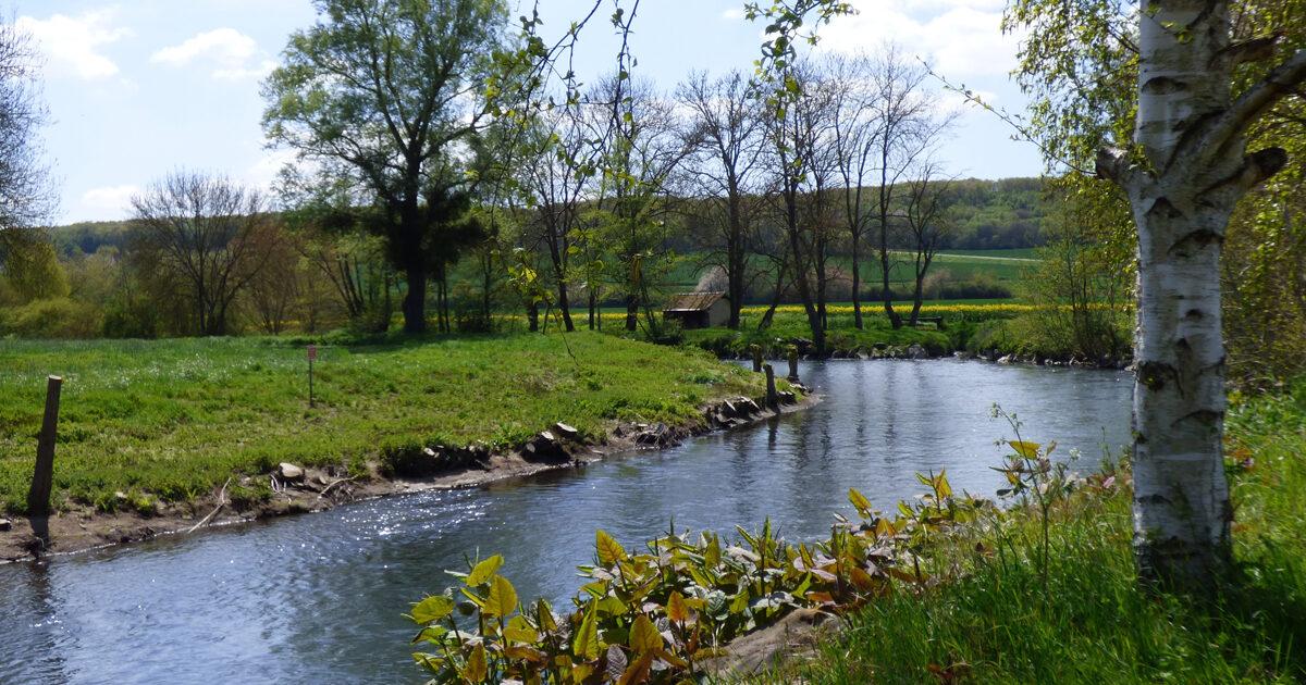 cours d'eau en pleine campagne, avec une petite maison au loin